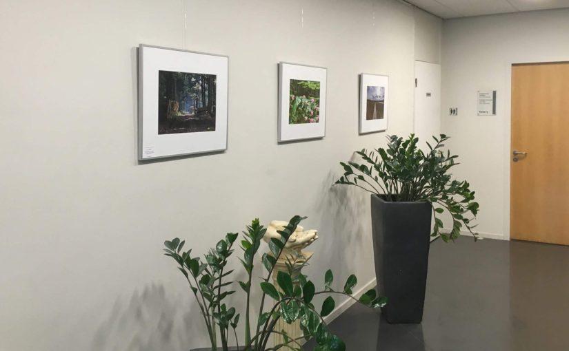 ILoveBreda Expositie – Medisch Centrum